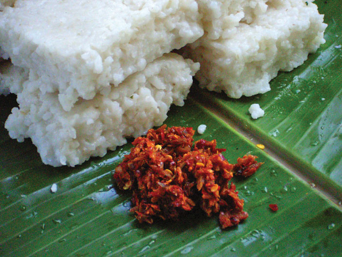 Kiri Bath- Sri lankan Milk Rice