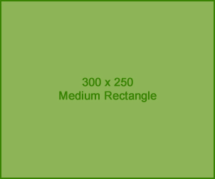 300x250 Rectangle